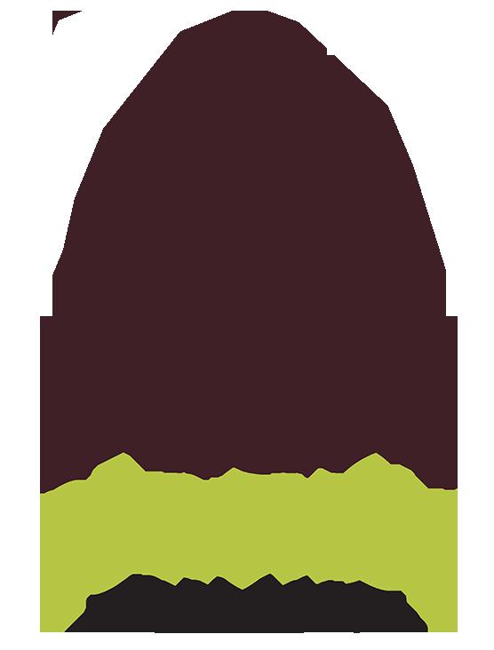 Gymnázium sv. Františka Assiského v Levoči